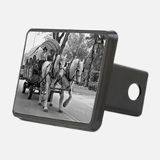 Horse and Wagon Hitch Cover