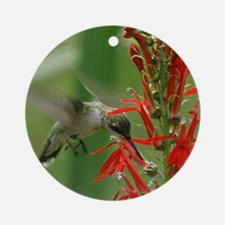 hummingbird_cafepress Round Ornament
