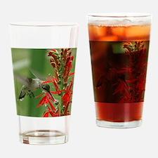 hummingbird_cafepress Drinking Glass