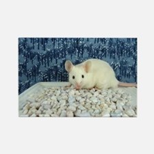 Winter Mouse Rectangle Magnet