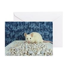 Winter Mouse Greeting Card
