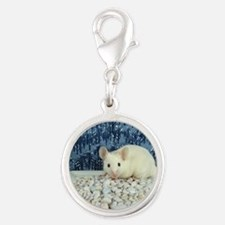 Winter Mouse Silver Round Charm