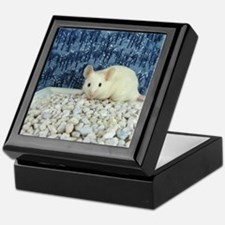 Winter Mouse Keepsake Box