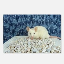 Winter Mouse Postcards (Package of 8)