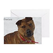 Darius - Calendar2 Greeting Card