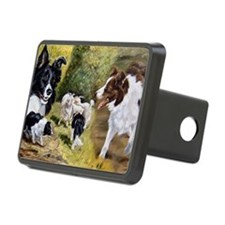 BC_laptop Hitch Cover