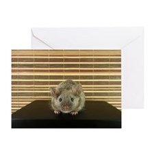 Mousey Greeting Card