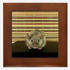 Mousey Framed Tile