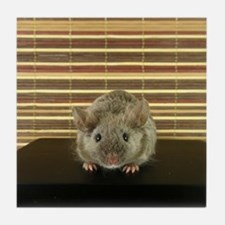 Mousey Tile Coaster