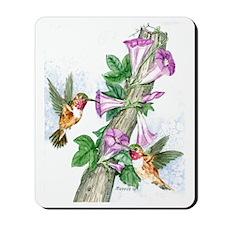 Humming Birds Feeding Mousepad
