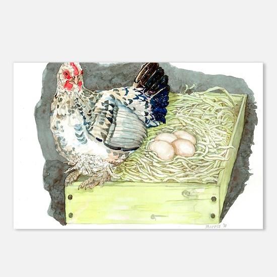 Bantam Hen Nesting Postcards (Package of 8)
