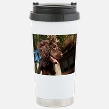 Boykin Spaniel Puppy Travel Mug
