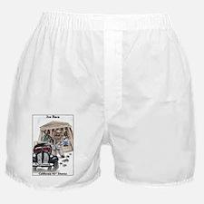 Joe Baca Boxer Shorts