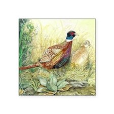 "Pheasants Nesting Square Sticker 3"" x 3"""