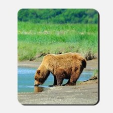 5x8_journal_bear_1 Mousepad