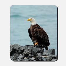 5x8_journal_eagle Mousepad