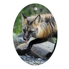 5x8_journal_fox Oval Ornament