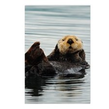5x8_journal_otter_7 Postcards (Package of 8)
