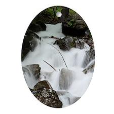 5x8_journal_waterfall Oval Ornament