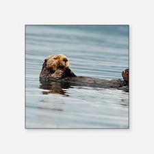 "5x8_journal_otter_6 Square Sticker 3"" x 3"""
