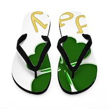 daly Flip Flops