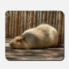 Capybara in Repose Mousepad