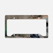 Power Napping Chimp (ABQ) License Plate Holder