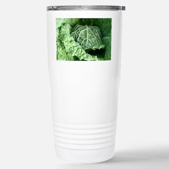 cabbage Stainless Steel Travel Mug