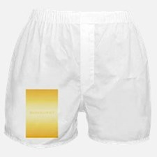 Sunburst journal Boxer Shorts