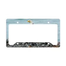 5x3oval_sticker_eagle License Plate Holder