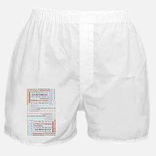 cbrain1c Boxer Shorts
