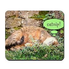 Mona Catnipping Mousepad