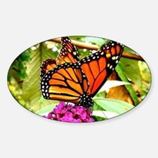 Monarch Butterfly Wall Calendar Pag Decal