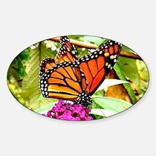 Monarch Butterfly Wall Calendar Pag Sticker (Oval)