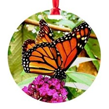 Monarch Butterfly Wall Calendar Pag Ornament