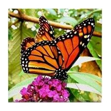 Monarch Butterfly Wall Calendar Page, Tile Coaster