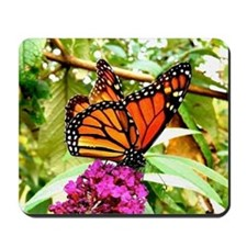 Monarch Butterfly Wall Calendar Page, Ca Mousepad