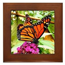 Monarch Butterfly Wall Calendar Page,  Framed Tile