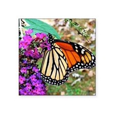 "Monarch Butterfly Wall Cale Square Sticker 3"" x 3"""
