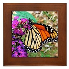 Monarch Butterfly Wall Calendar, Calen Framed Tile