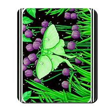 Tetzlaff009-3000length Mousepad