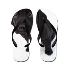 ANNIE LARGE Flip Flops