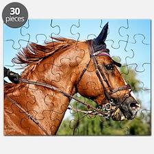 5x7card_jumper_headshot copy Puzzle