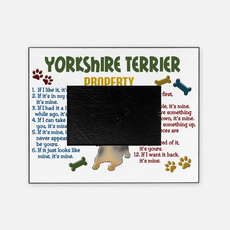 D Yorkshire Terrier Property Laws 4 Picture Frame