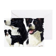 Bor Collie blanket Greeting Card