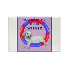 Agility Clumber Spaniel Rectangle Magnet