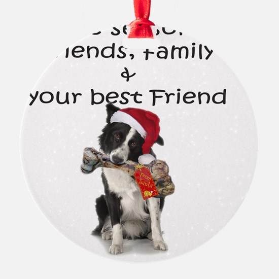border collie christmas message Ornament