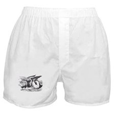 Sleeping Gryphon Boxer Shorts