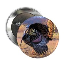 "Wild turkey gobbler 2.25"" Button"