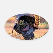 Wild turkey gobbler Oval Car Magnet